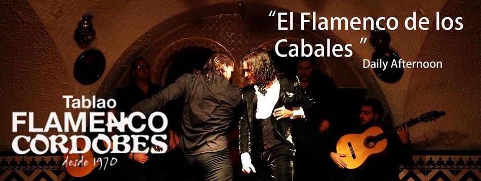 tablaoo flamenco cordobes