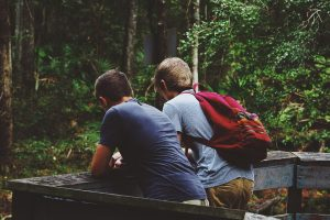 Excursionistes a un mirador al bosc