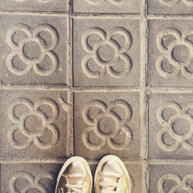 La flor de Barcelona baldosas barcelona catalua panotdeflor eixample joseppuighellip