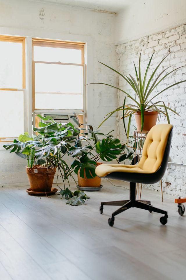 Cadira d'oficina a una sala