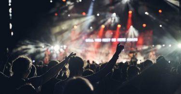 Públic gaudint d'un concert de rock